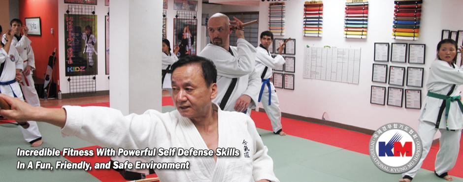 Welcome to Hapkido Martial Arts Seoul - Kyung Mu Hapkido