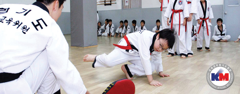 Hapkido Lessons in Seoul