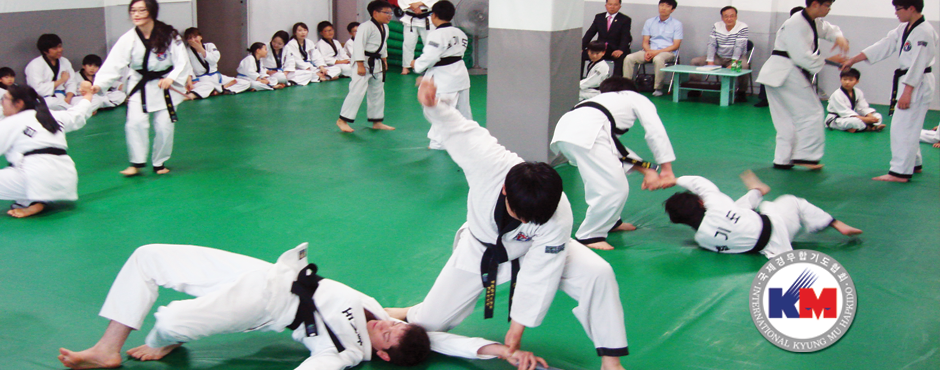 Korea martial arts school in seoul